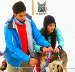 Sukhi Atwal and Jinder Atwal harness up there pups on The Amazing Race Canada 2