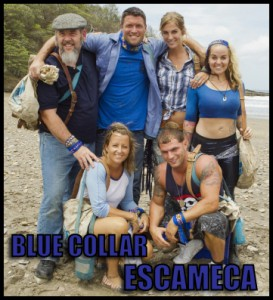 escameca_bluecollar
